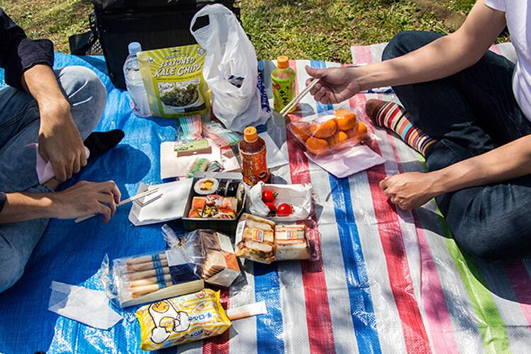 picnic Sheet