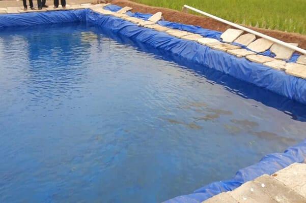 tarpaulin pond liner