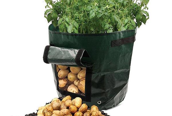 PLANTING BAG